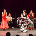 Sangria Sunset Flamenco