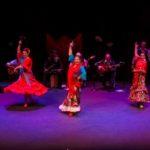 Valentine's Flamenco Fire