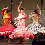 Gypsy Flamenco Passion